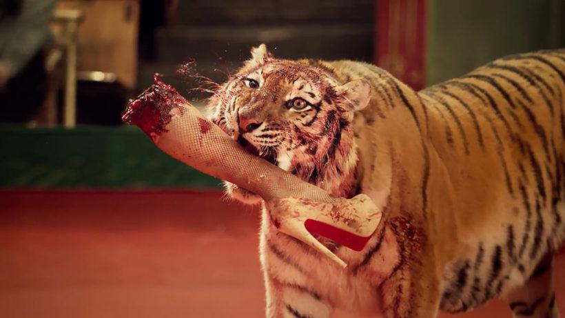 """Musikvideo LENINGRAD """"KOLSCHIK"""": Ein Tiger hat ein abgebissenes Damenbein mit Netzstrümpfen und hochhackigem Schuh im Maul."""